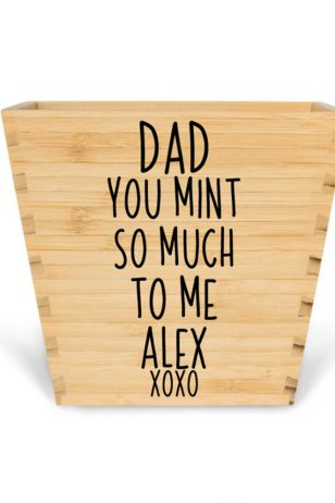 plant pot with quote you mint so much personalised father's day gift pot